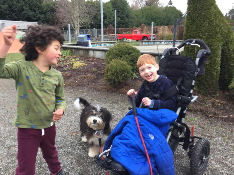 Two preschoolers walk a dog together, one is in a stroller and one is walking