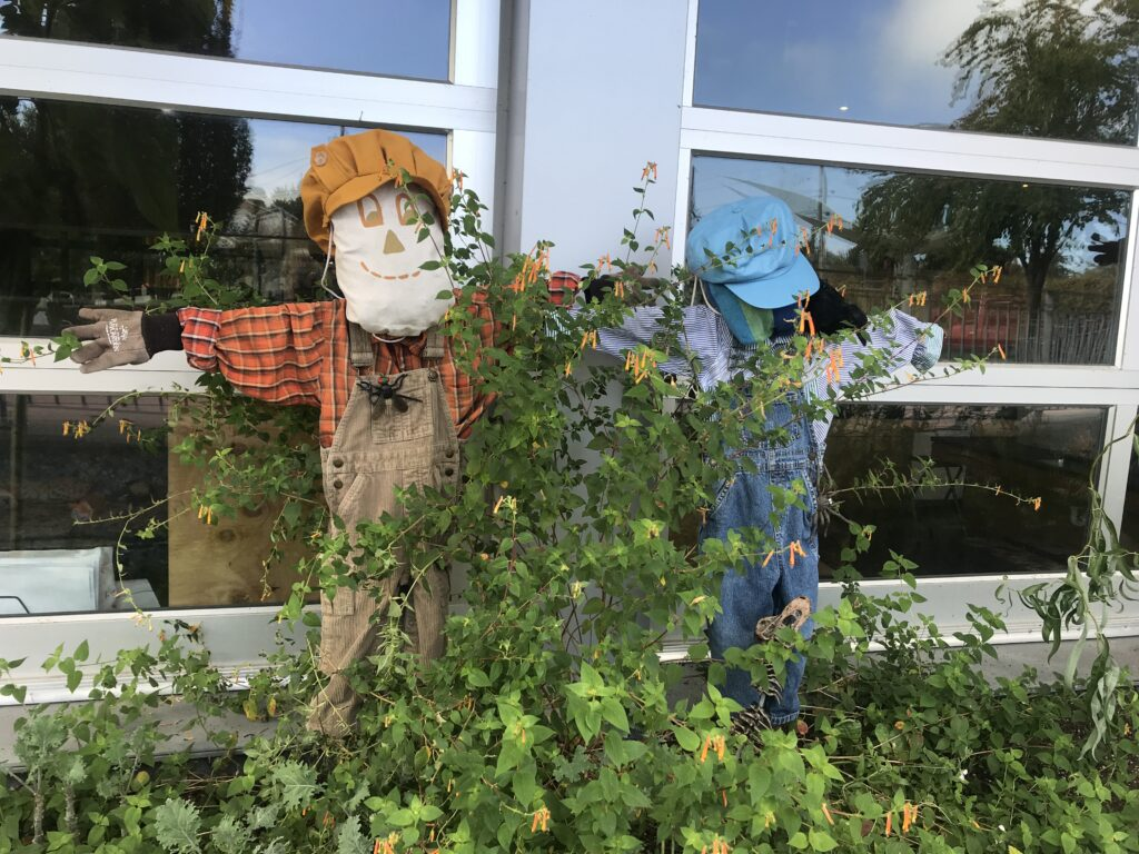 Scarecrows at the PlayGarden